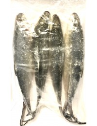 FROZEN WHOLE MILK FISH - 2kg