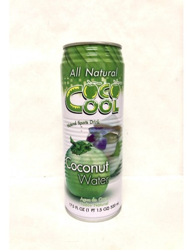 ALL NATURAL COCONUT WATER - 520ml