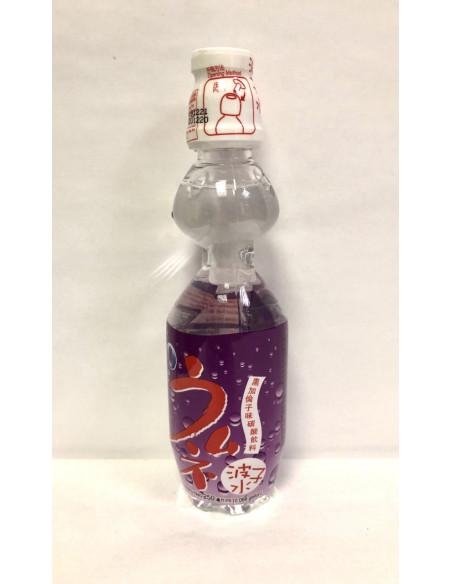 EDO SODA DRINK BLACKCURRANT FLAVOUR - 250ml